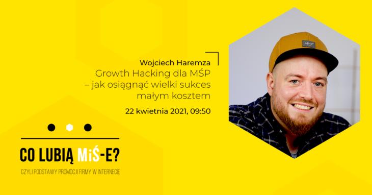 Szkolenie Co lubią MiŚ-e? Wojciech Haremza, iCEA Growth Hacking dla MŚP – jak osiągnąć wielki sukces małym kosztem